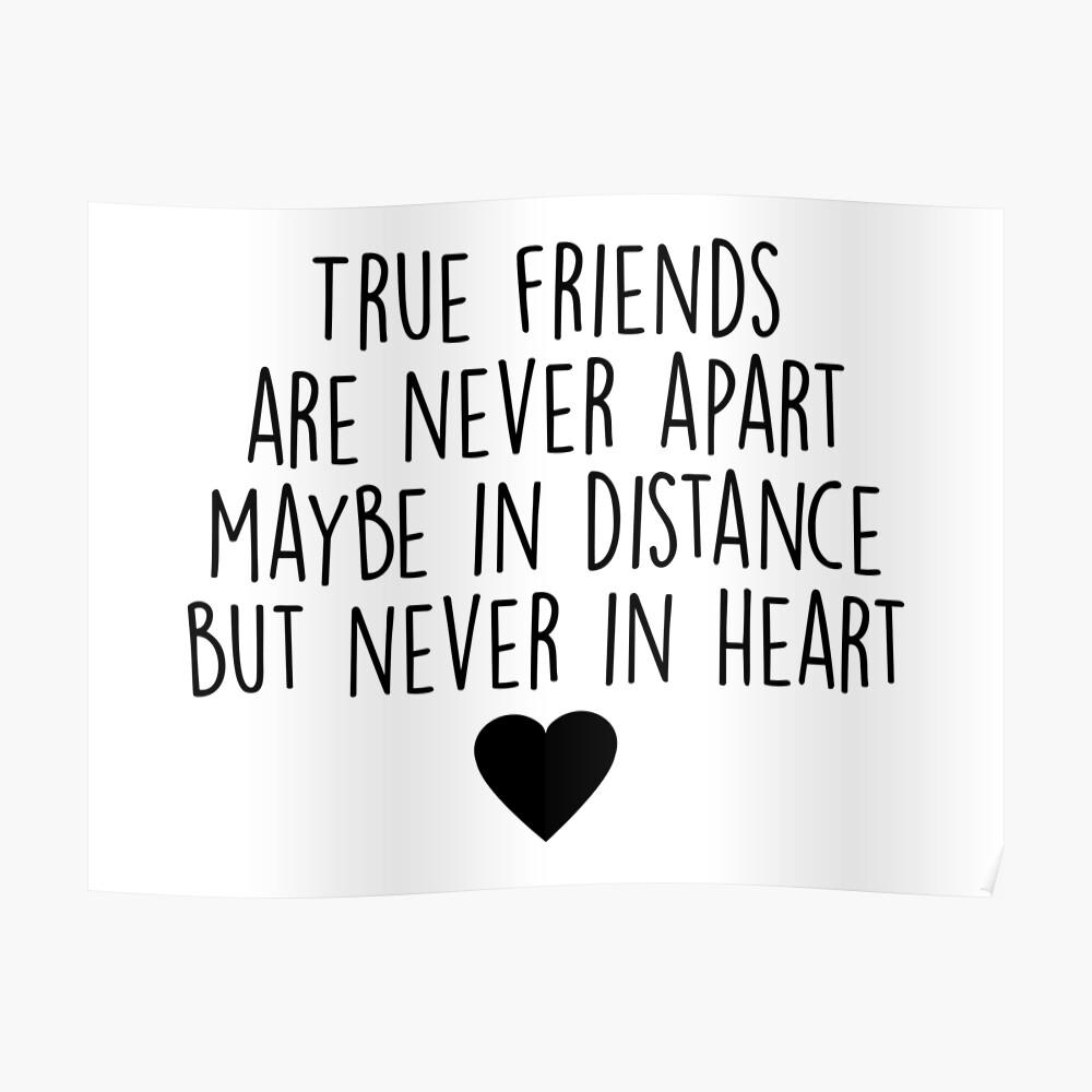 Wahre Freunde sind niemals getrennt Poster
