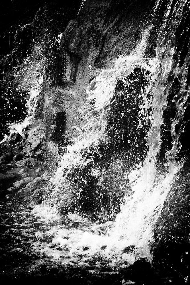 Still Water 08  by leafylashes