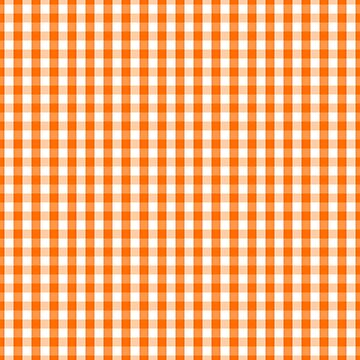 Classic Pumpkin Orange and White Gingham Check Pattern by Creepyhollow