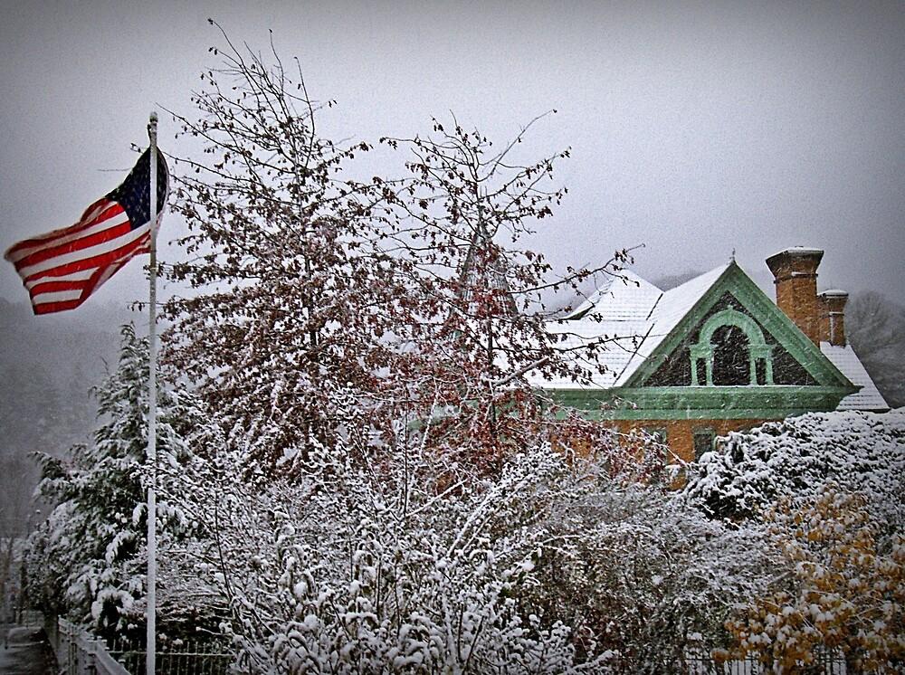 Snow Blown Stars And Stripes by Paul Lubaczewski