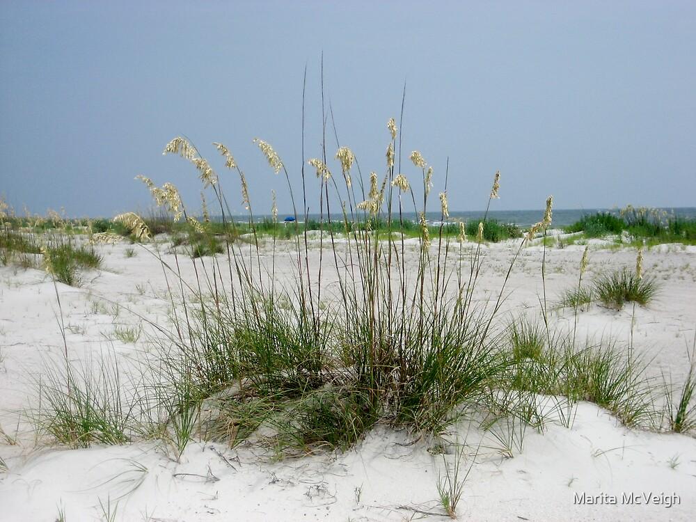 Beach Grass by Marita McVeigh