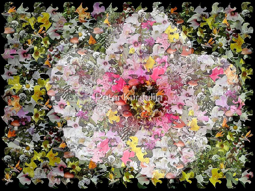 Floral Big Bang by Peter Kurdulija