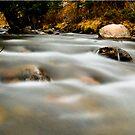 Taylor River by Josh Dayton