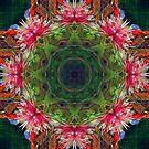 Flutterby faery circle by Celeste Mookherjee