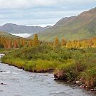 Willow Creek II by Gary L   Suddath