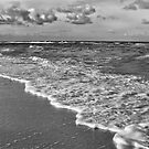 Cold Breeze Along The Beach~ Naples Florida by daphsam