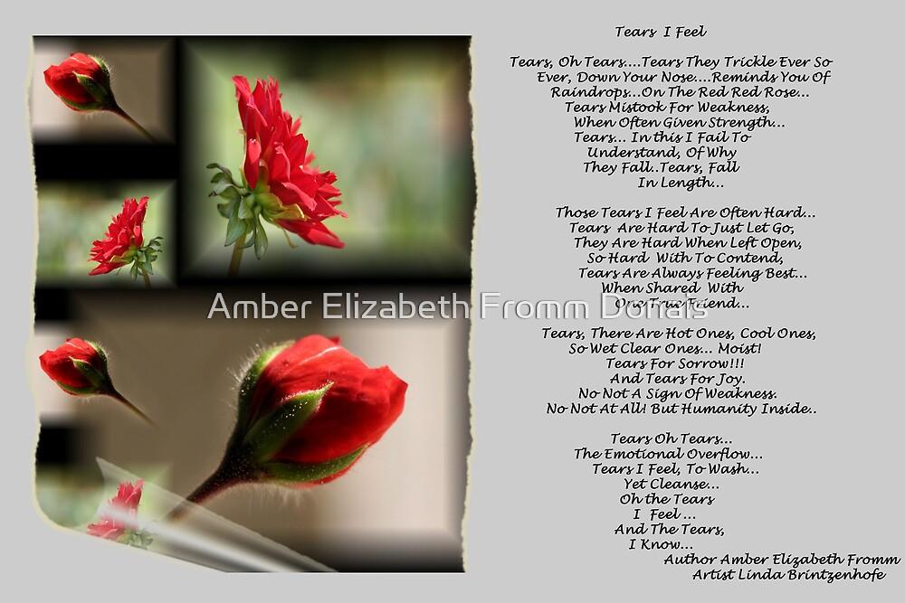 Tears I Feel Version 1  by Amber Elizabeth Fromm Donais
