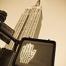 Empire State Building by Alan Copson