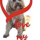 Love my Cavoodle by Ian McKenzie