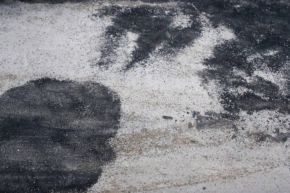 Travaux - Road-Works ahead #8 by Pascale Baud