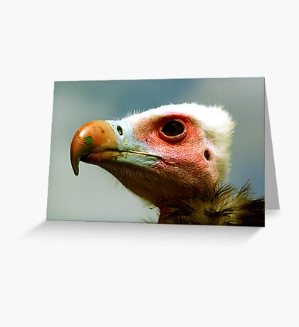 Ethel the Vulture 1 Greeting Card