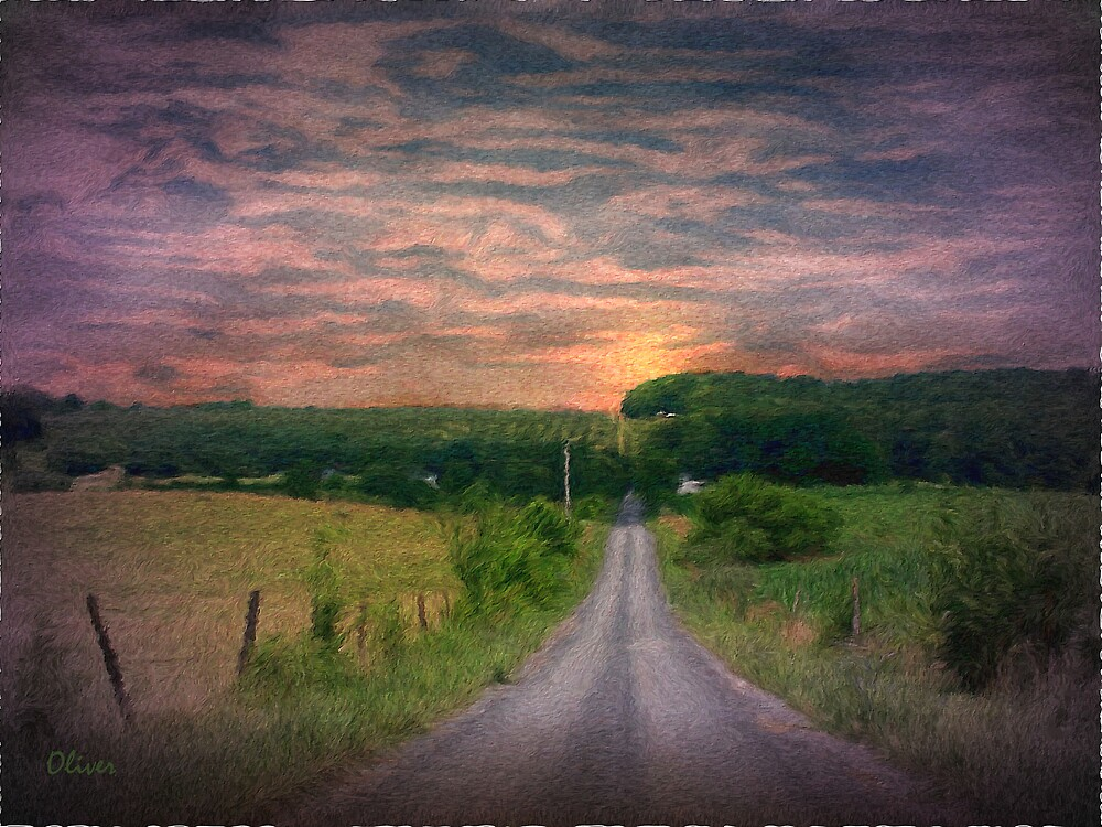 The Long Walk Home by Charles Oliver