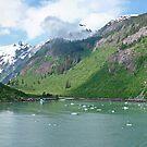 Inside Passage Alaska by AnnDixon