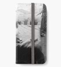 Willow on bed iPhone Wallet/Case/Skin