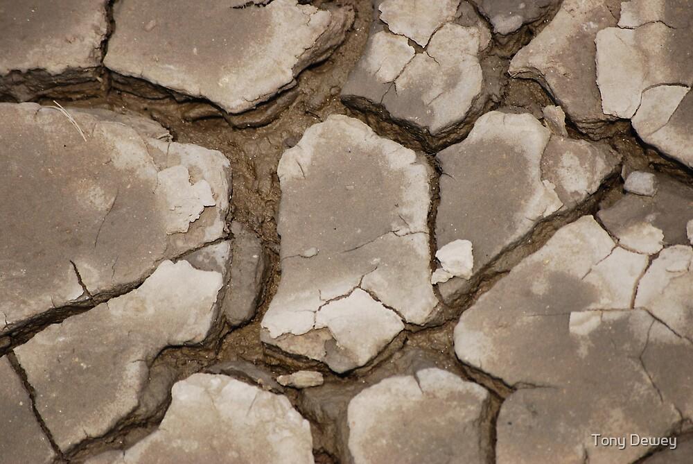 Dried Mud by Tony Dewey