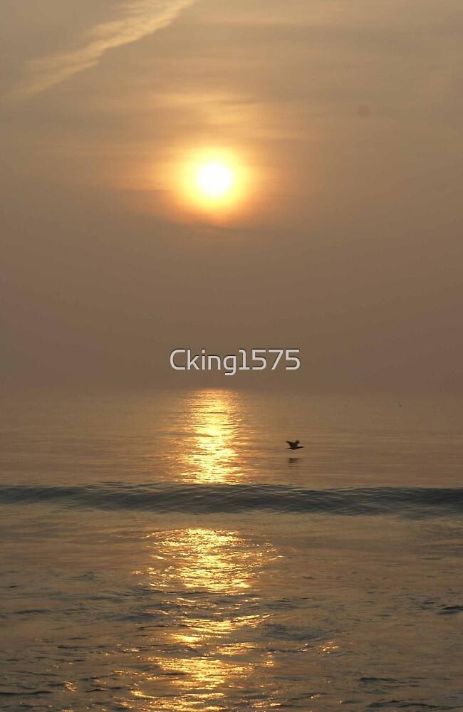 Sunrise by Cking1575