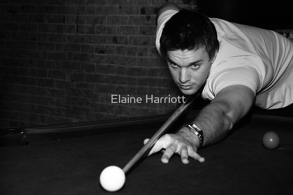 The Player by Elaine Harriott