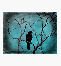 Aqua Blue Crow Sky Photographic Print