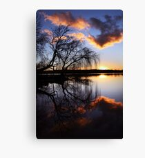 Mannum willows Canvas Print