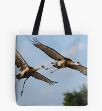 Lovers in the air Tote Bag
