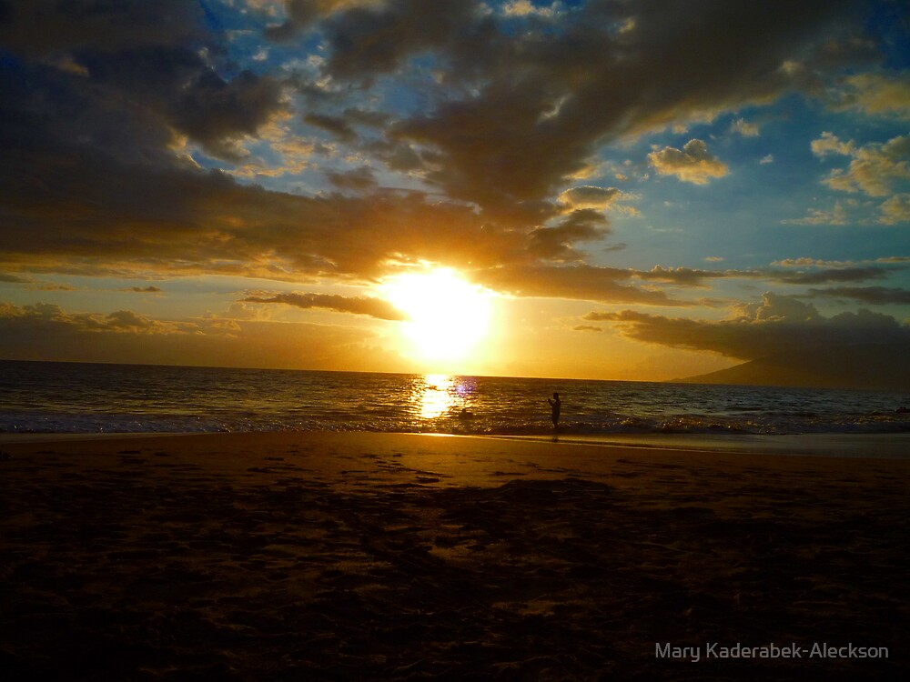 Hawaii Sunset   by Mary Kaderabek-Aleckson
