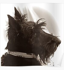 Scottie Dog: Paddy the 'Rescue' Poster