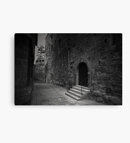Mind the Stairs Canvas Print