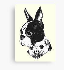 Tattooed Boston Terrier  Canvas Print