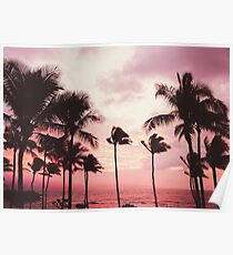 Pink Palm Paradise Poster
