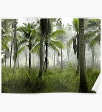 Palm Trees at Sunrise - Foggy Forest Poster