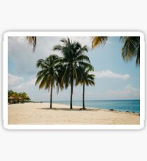 Tropical Getaway - Shade in the Palm Trees Sticker