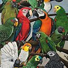 """Peter's Exotics"" by Skye Elizabeth  Tranter"