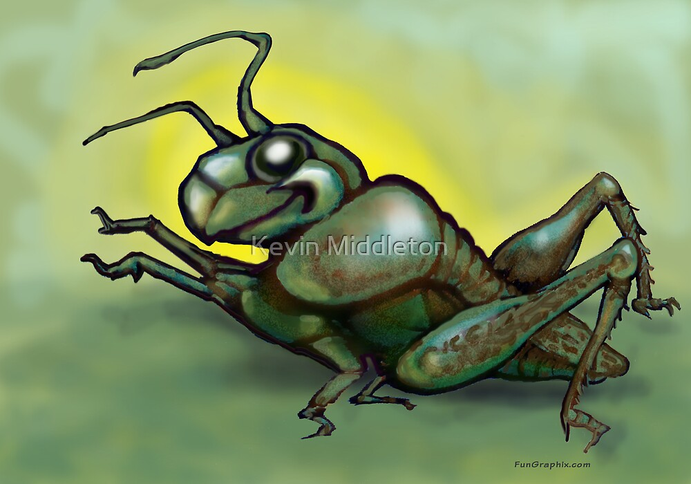 Grasshopper by Kevin Middleton