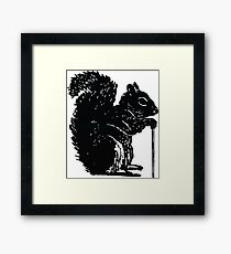 The Aged Squirrel Framed Print