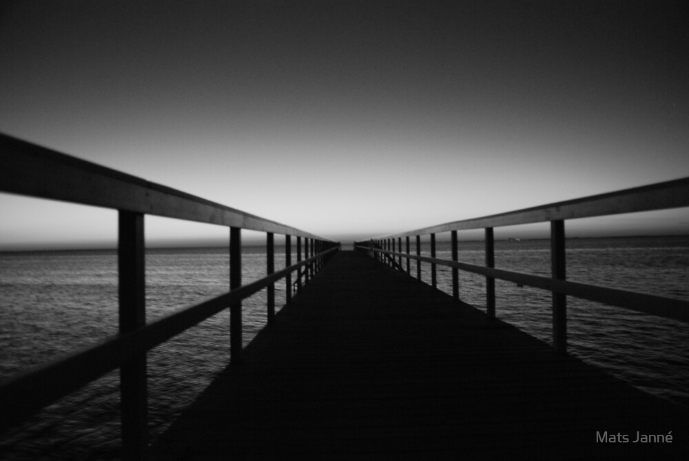 In to the Grey Night by Mats Janné