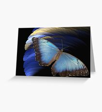 Butterfly's last adventure Greeting Card