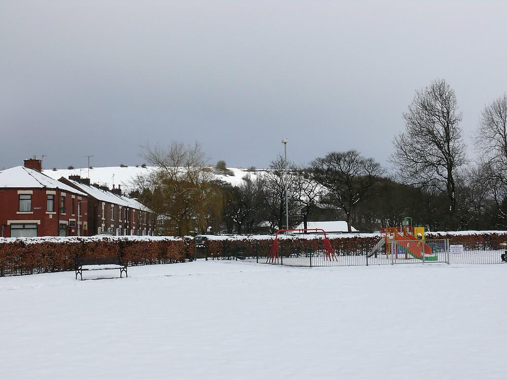 snow day by emz95xx