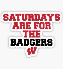 University of Wisconsin - Style 41 Sticker