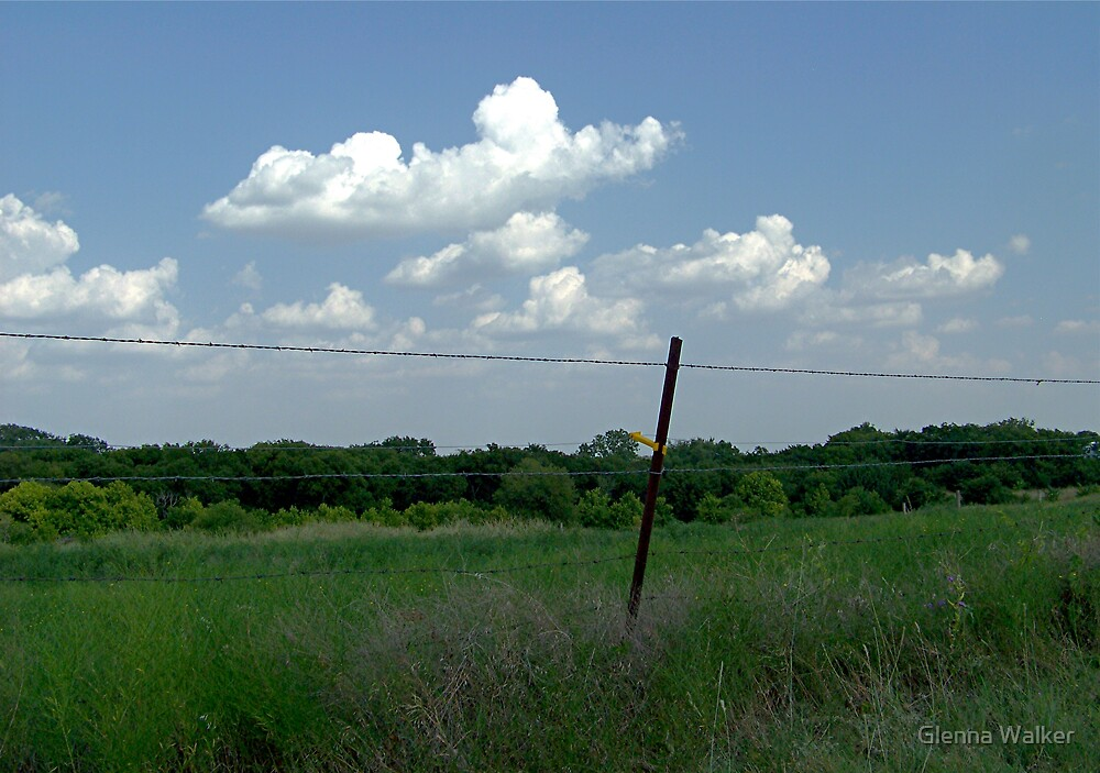 Hot Summer Day in Texas by Glenna Walker