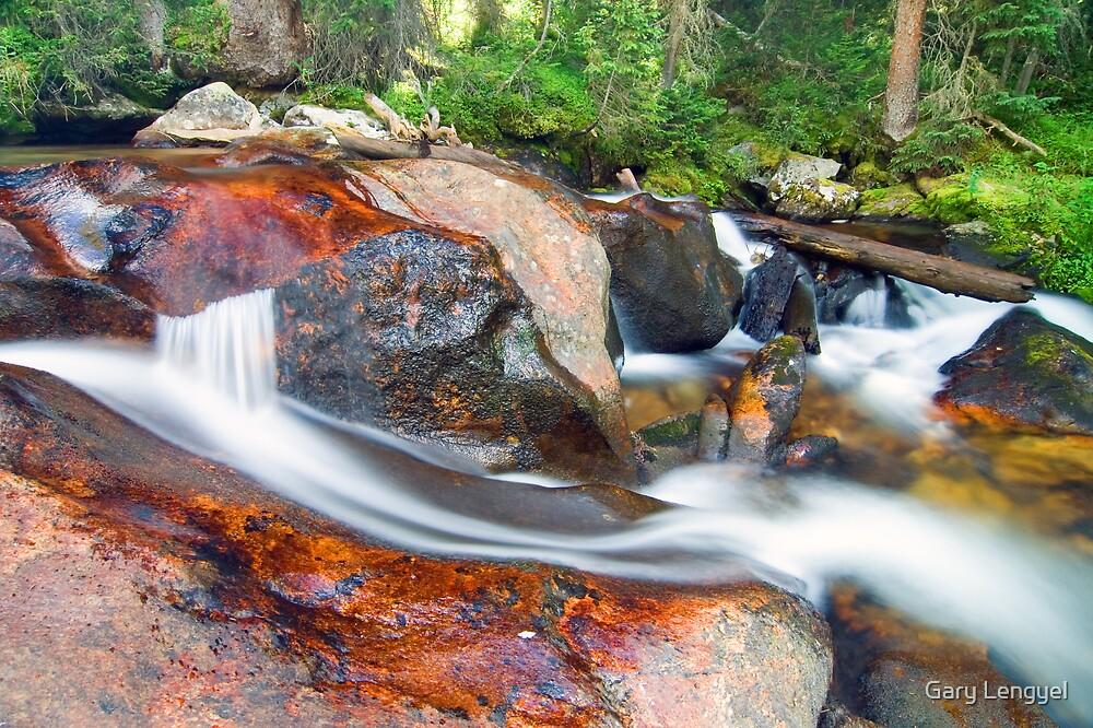 Granite Falls, Rocky Mountain National Park by Gary Lengyel