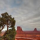 Monument Valley, Clouds, Juniper Tree by StonePics