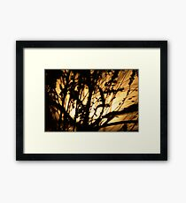 Natural Blues Framed Print