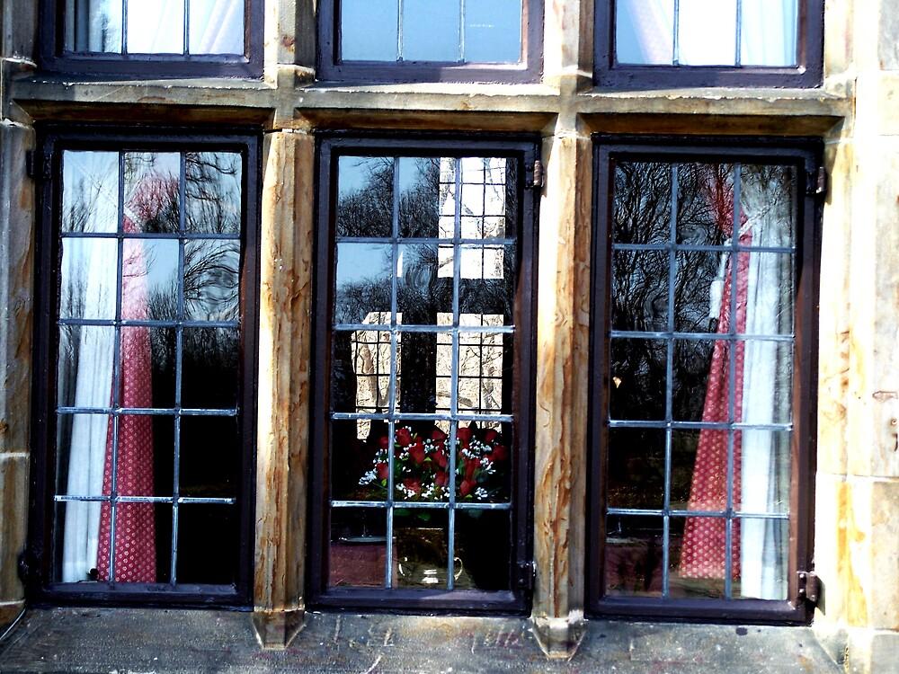 Castle window by Judi Taylor