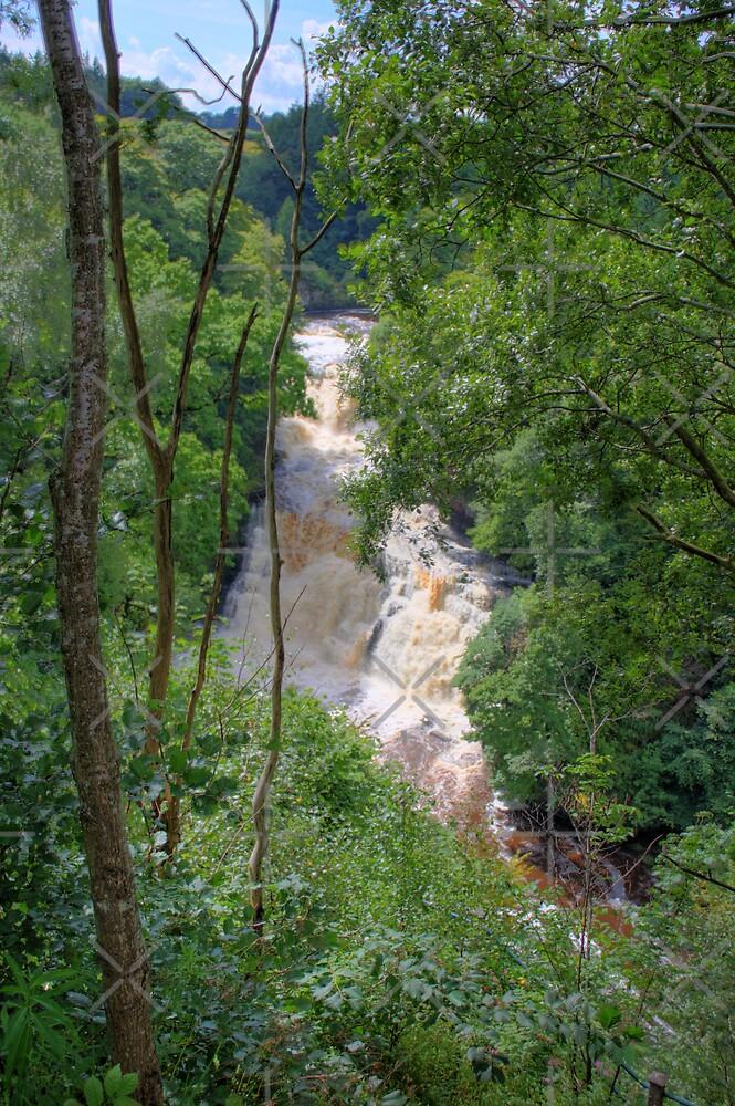 Corra Linn Falls by Tom Gomez