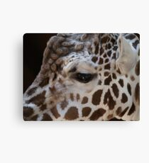lashes Canvas Print