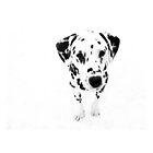 I'm a Dalmatian by trish725
