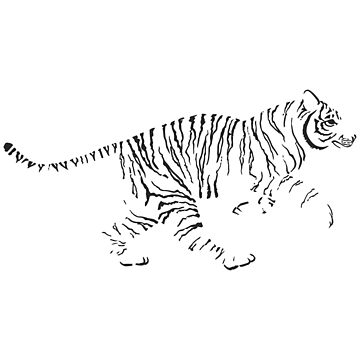 Tiger by Vhitostore