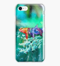 Color of Fish iPhone Case/Skin