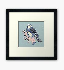 Sweet Robin Framed Print
