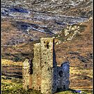 Ardvreck Castle  by Alexander Mcrobbie-Munro